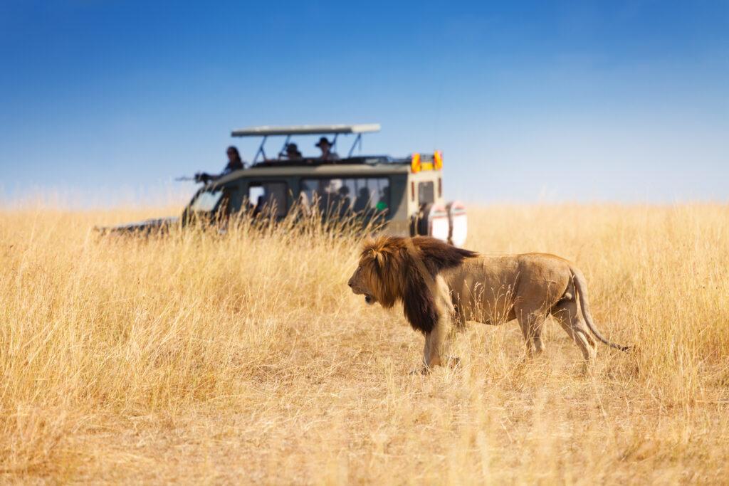 Noste-safari on avaimet käteen -tuotteistusprojekti